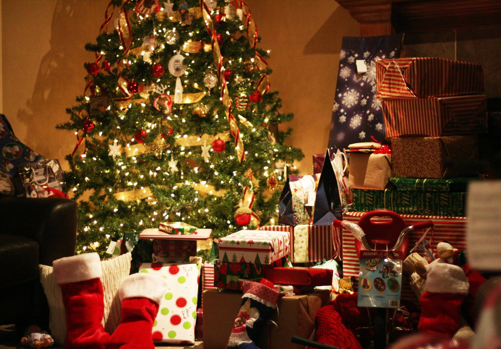 Image result for Advices on buying the Christmas tree from Hilltop providers